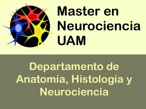 Estudios de grado y postgrado, Facultad de Medicina de Madrid