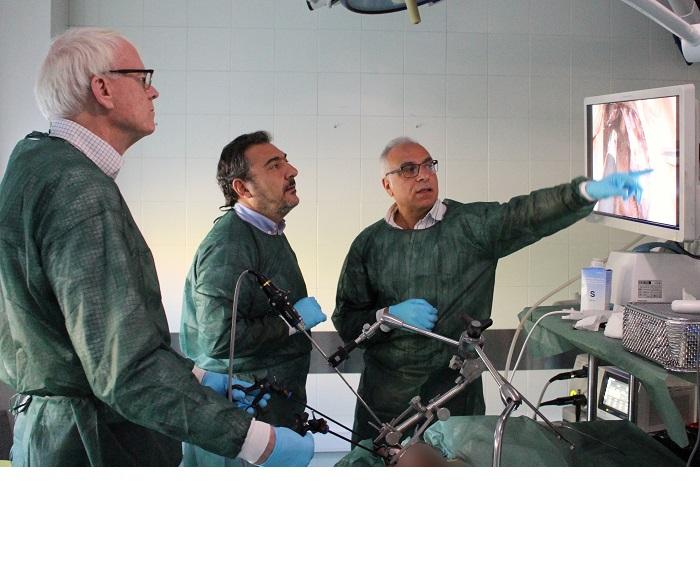 Departamento de anatomia histologia y neurociencia
