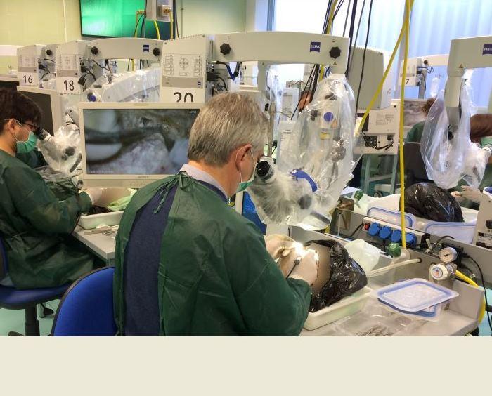 Laboratorio de Anatomía Aplicada: Curso de Anatomía del Hueso ...