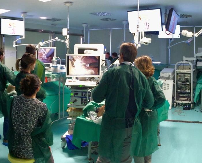 Informacion donacion de cuerpo, donacion de cuerpo a la ciencia
