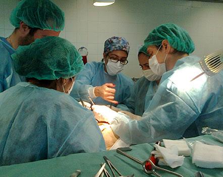 Donacion de organos en España, donante de cuerpo